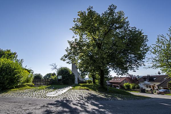 Prinzregenten-Linden (an der Ickinger Kapelle (Maibaum).